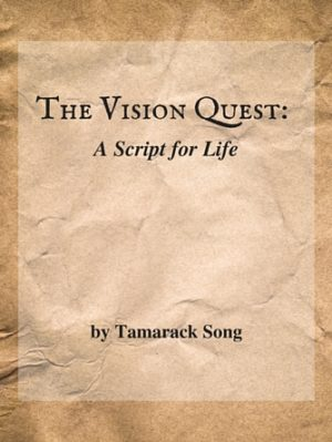 Thevisionquest